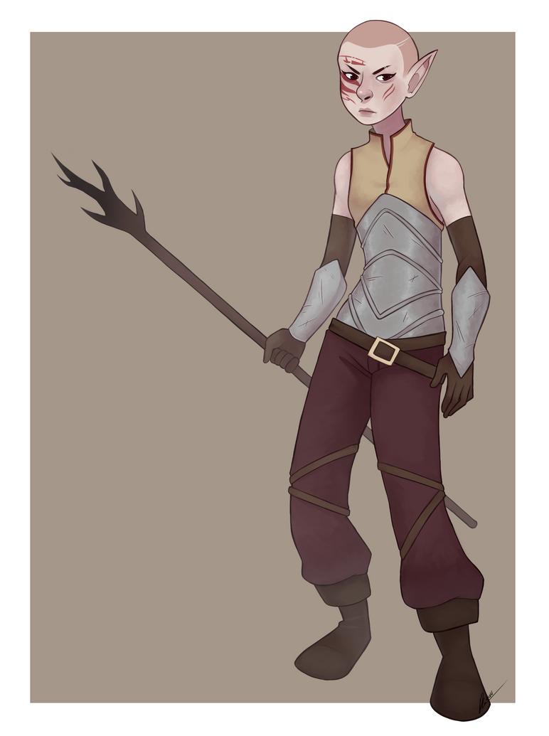 Dragon Age: Warden by Rad-Pax