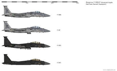 [AU-BG] Boeing-Tiger Claw F-15BG/F Advanced Eagle by Sgt-Turbo
