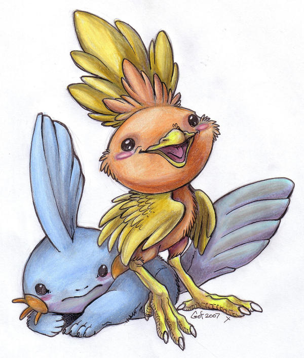 Torchic and Mudkip
