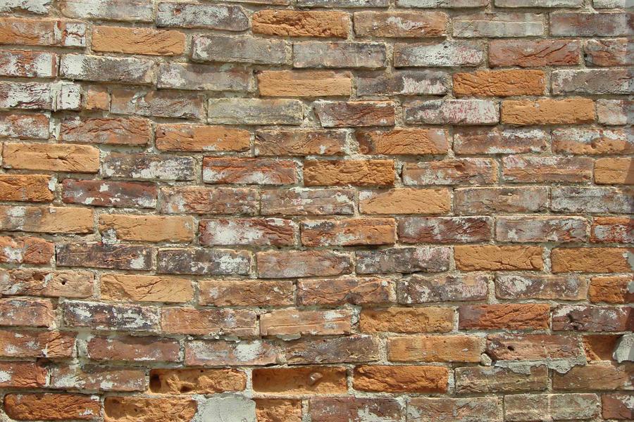 Brick Wall by asaph70