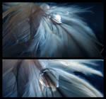 Dreamcatcher - Night -