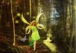 The Walk Of The Fairies