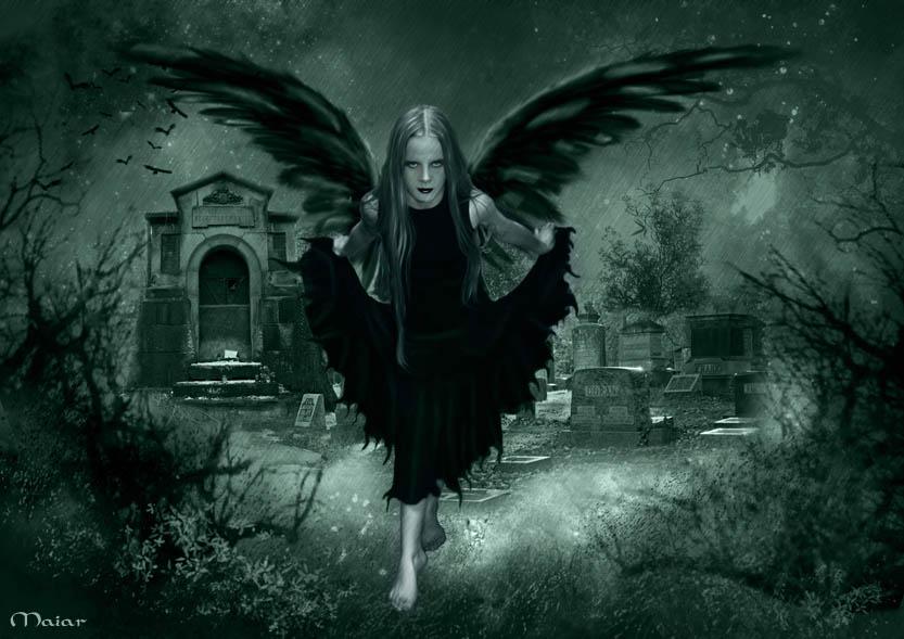 The dark fairy