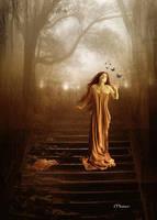 Whispers In The Dark Night by maiarcita