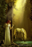 The White Horse by maiarcita
