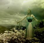 Among Daisies by maiarcita