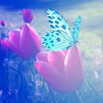 De Mariposa y Flores