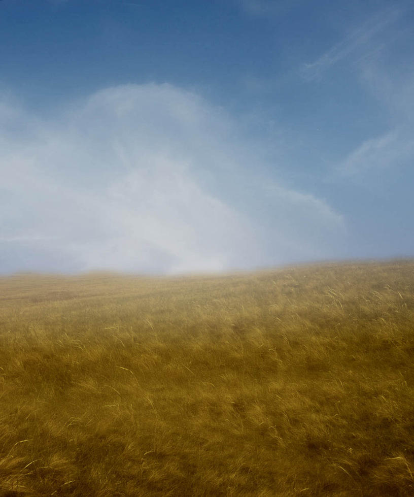 Premade Background 16 by maiarcita
