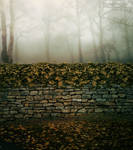 Premade Background 39