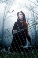 Iron Fence by maiarcita