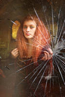 Broken Glass by maiarcita