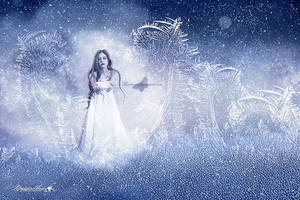 Snow by maiarcita