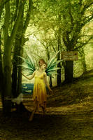 The Path Of Fairies