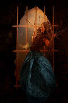 The Window Grating