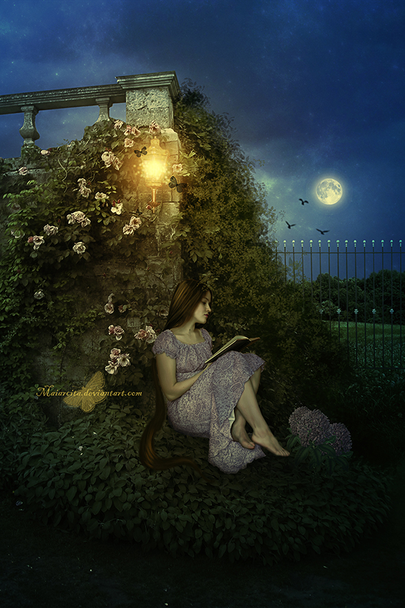 Summer Dream Nights