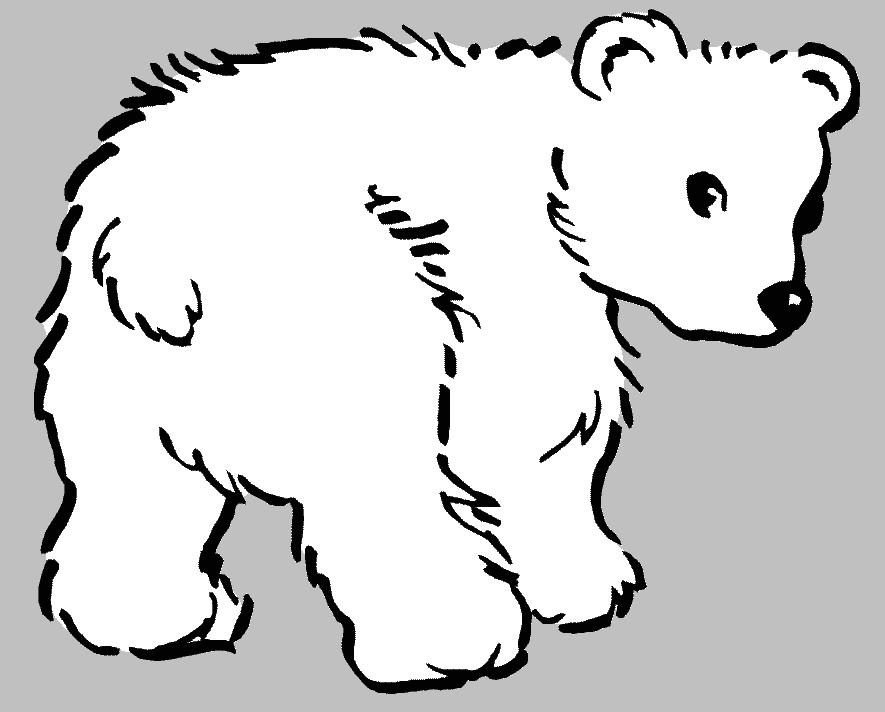 Polar Bear Cub By Jess The Hedgehog On DeviantArt