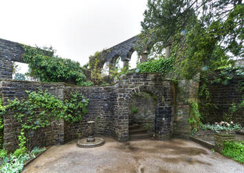Dyffryn Gardens in the rain stock 7