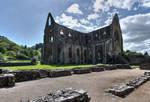 Tintern Abbey Stock 1