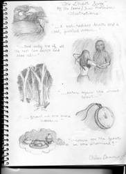 Ghost Song illustrations