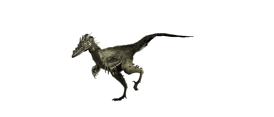 Baby Troodon Jurassic ...
