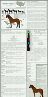 Bashki Horse Breed Sheet -new-