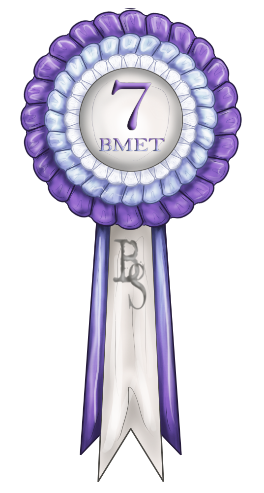 Bmet 7th Place Ribbon By Baringa Of The Wind On Deviantart