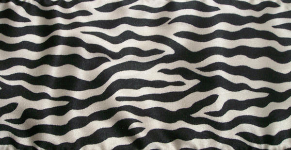 Zebra by Imm0rtal-St0ck