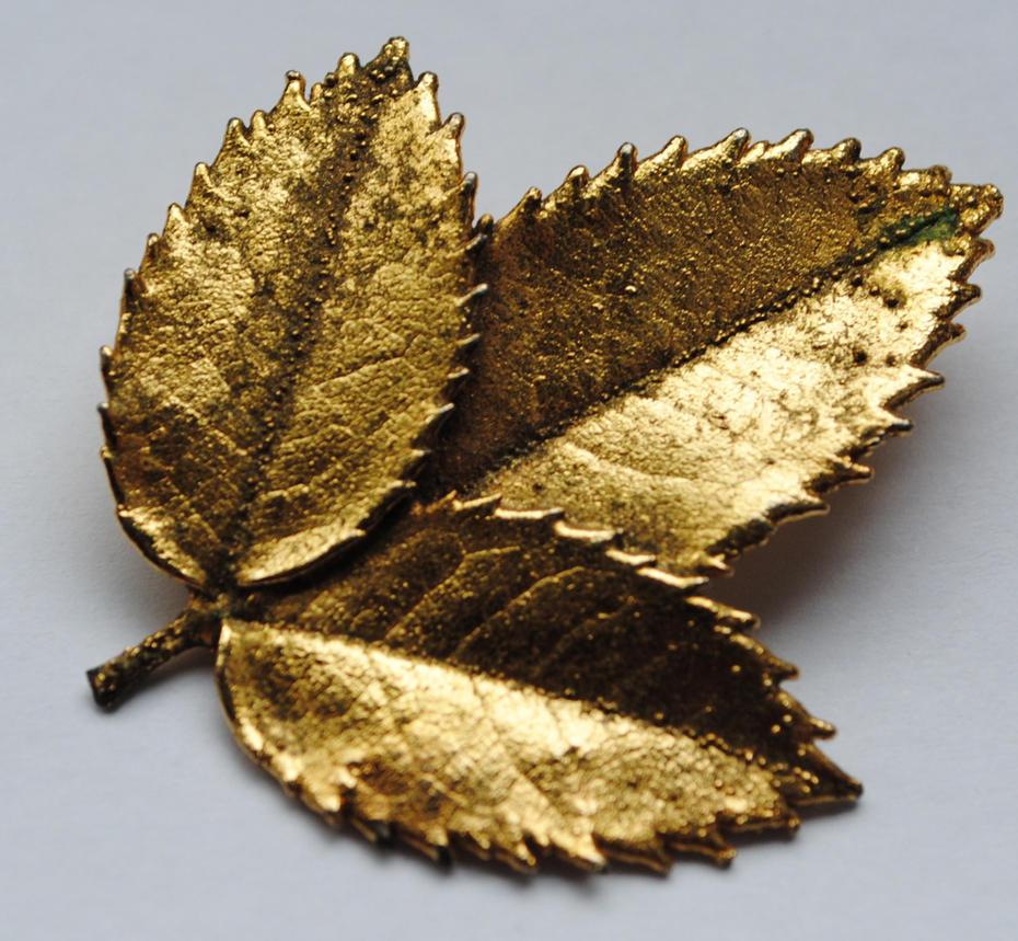 golden leaf stock 03 by ponystock on deviantart