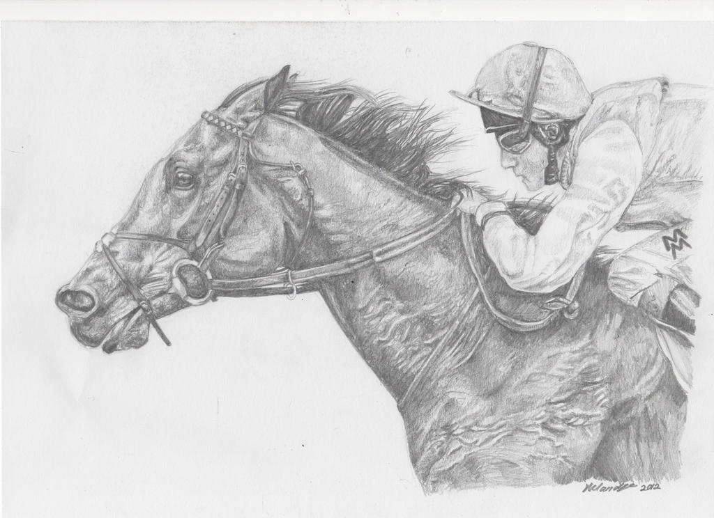 Racing horse drawings