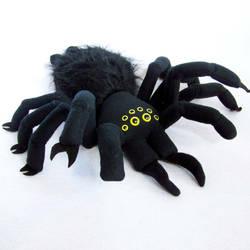 itsy bitsy spider by WeirdBugLady