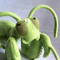 Mantis close up by WeirdBugLady