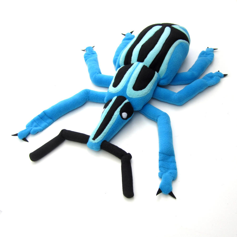 Blue weevil by WeirdBugLady