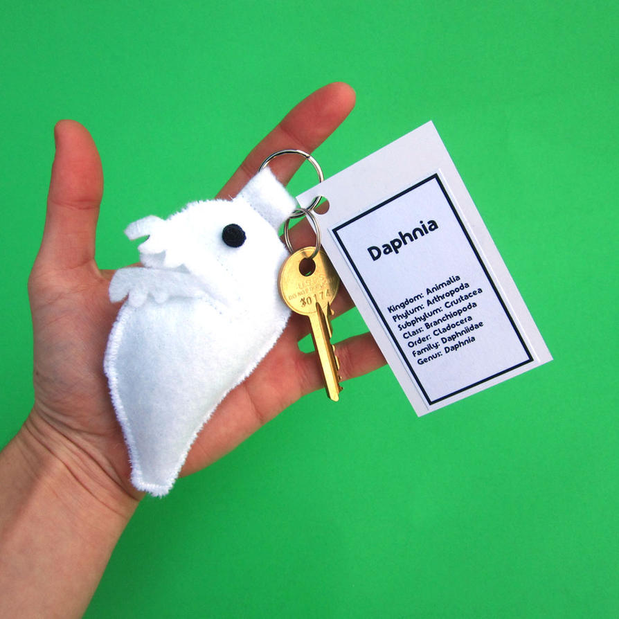 Daphnia keychain by WeirdBugLady