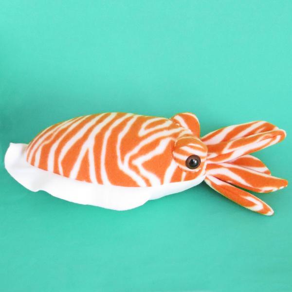 Cuddly common cuttlefish by WeirdBugLady