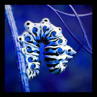 blue swirly by WeirdBugLady