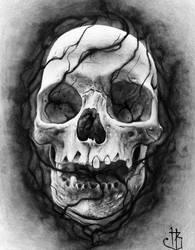 Skull(2) Inverted