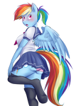 Rainbow Blush