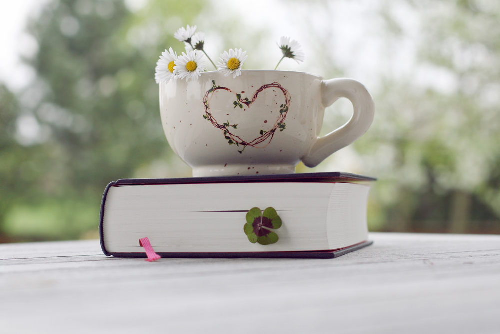 the cup and the book