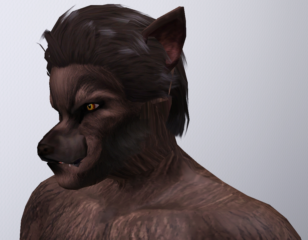 Sims  Dog Eyes