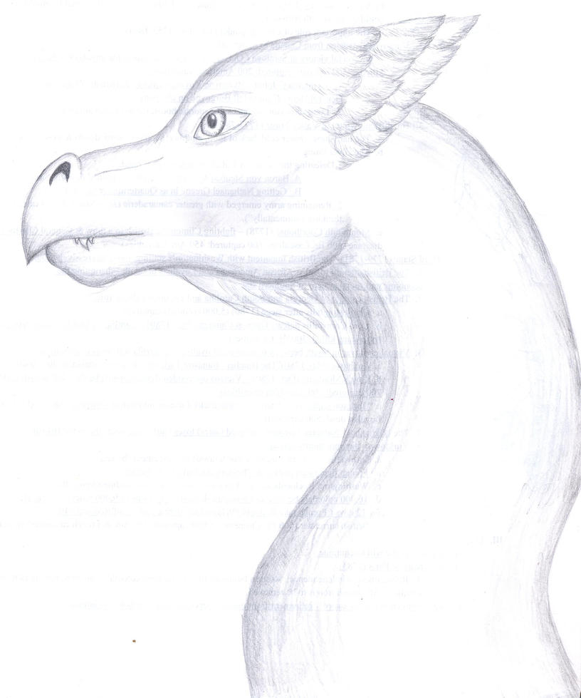 dragon head sketch by camkitty2 on deviantart