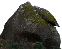 Jungle Boulder Precut by Stockopedia