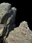 Cliff Precut 6