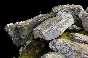 Lichen Cliff Precut by Stockopedia