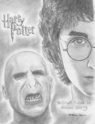 Harry vs Voldemort : battle by infinityenergy