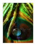 Don't Look II