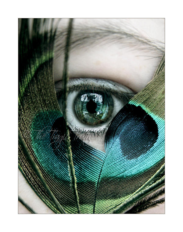 Saw You Drown