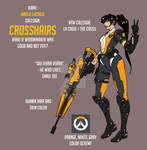 Overwatch Fan Skin: Crosshairs
