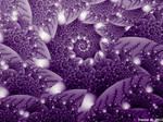 Purple Heights Spiral