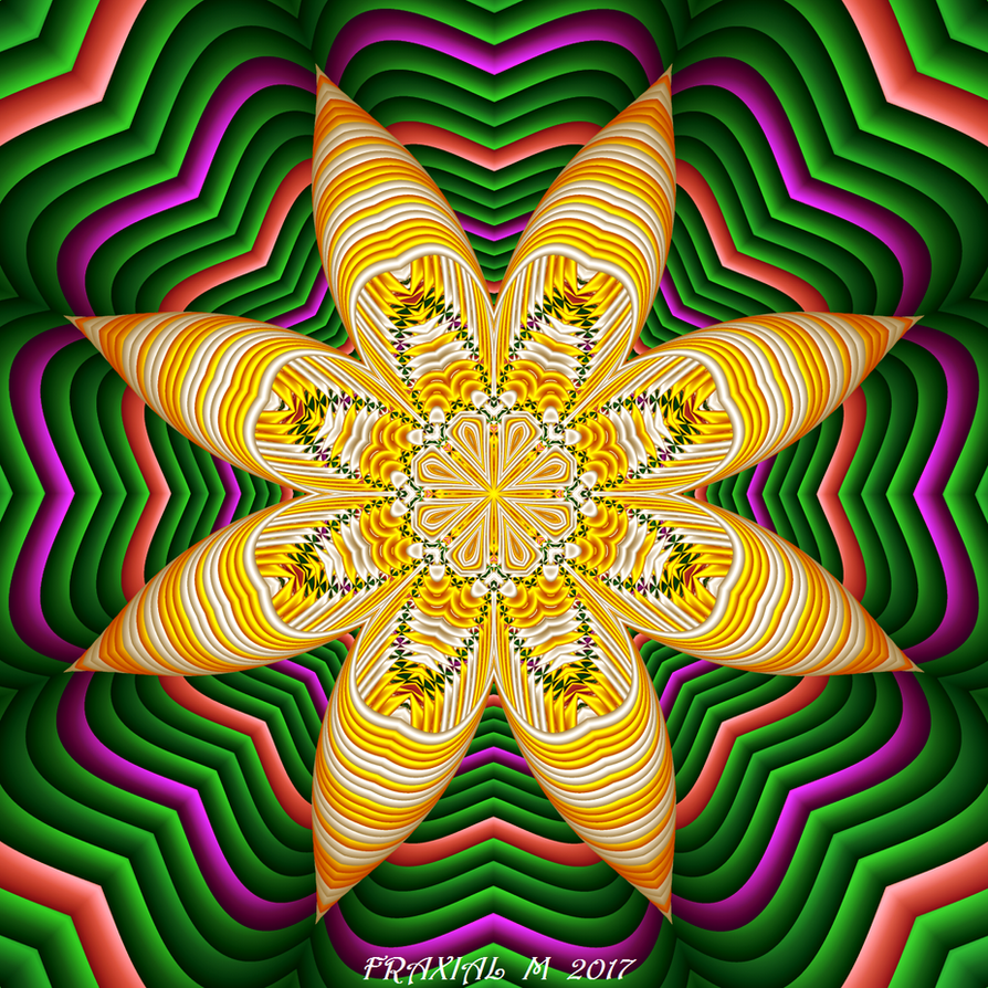 Hypocycloid  Orchid by fraxialmadness3