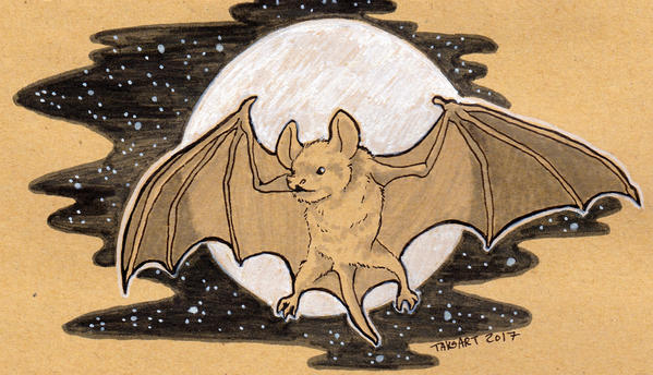 Inktober - Bats! by TaksArt